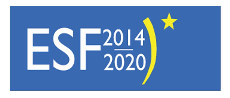 Met ESF-E subsidie 2018 VEILIG WERKEN implementeren